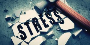 Stress and body composition